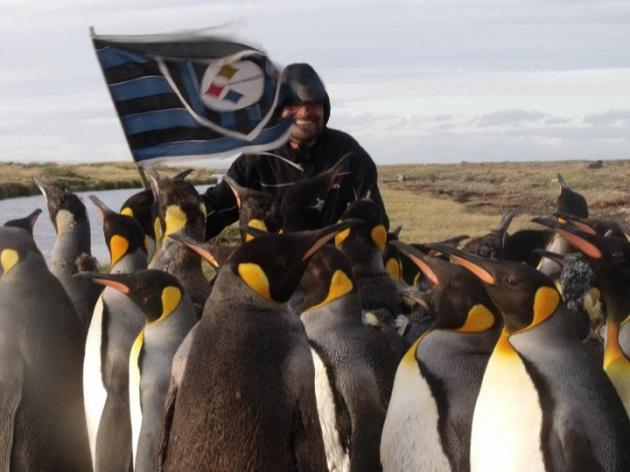 El hincha y los pingüinos   nelson espinoza orellana