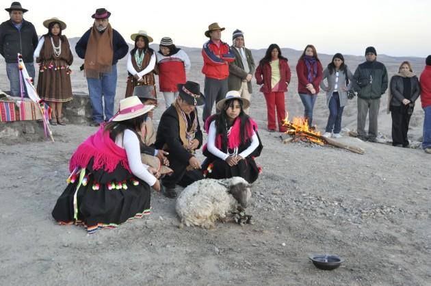 Machaq Mara en Pozo Almonte
