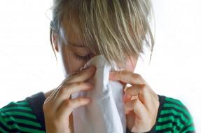 Científicos revelan los 8 alimentos más alérgicos  De-contexto-Sebastian-Smit-en-sxc.hu_-287x190