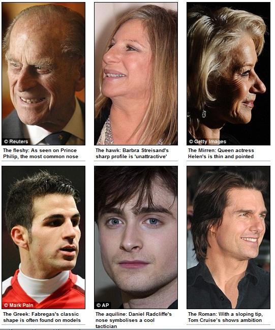 Narices: Carnosa, Halcón, Mirren, Griega, Aguileña y Romana | Daily Mail