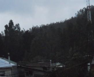 Denuncian construcción de antena en sector de Concepción sin avisar a vecinos