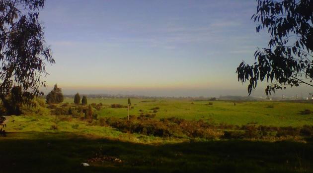 Nube tóxica | Municipalidad de Quintero