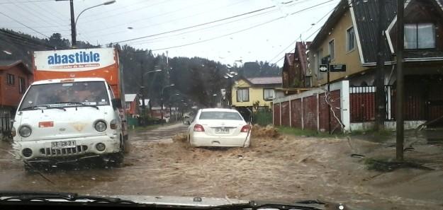 Sector Los Lirios, Concepción | Romina Espinoza