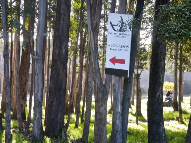 Contaminación Visual en Parque | Carlos Poblete