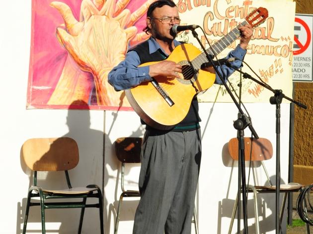 actividad por un centro cultural para Temuco | Felipe Mellado