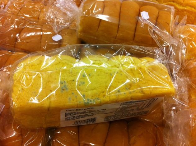 Pan con hongos   Julián Rodriguez Schneider