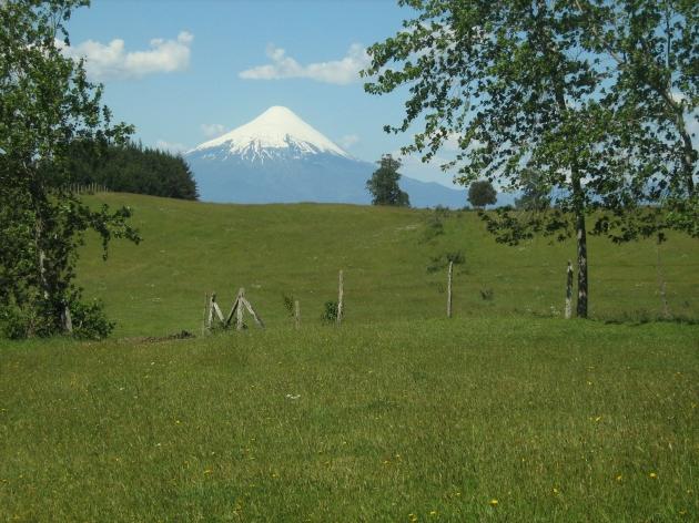 Volcán Osorno y Frutillar Bajo | Lionel