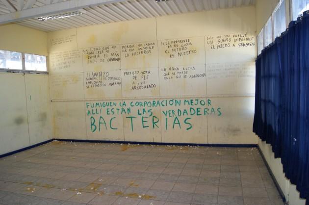 Imagen: Colegio Charles Darwin de Villa Alemana