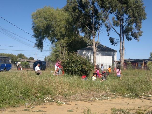 Despreocupación del Municipio de San Pedro de la Paz por las áreas Verdes   Pablo