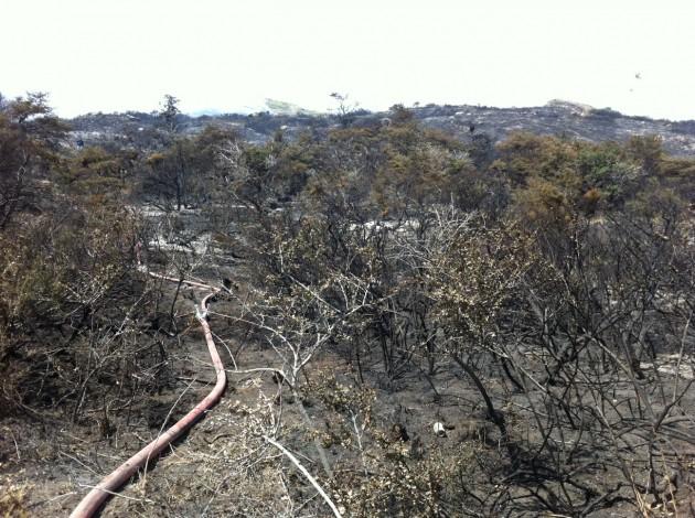 Incendio Torres del Paine | Néstor Aburto