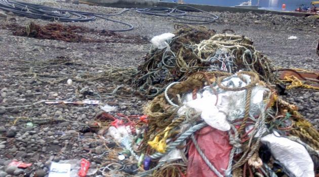 Contaminación industrial de playa El Cobre