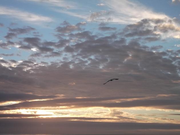 Atardecer Playa Blanca en Lota | Yudith Maldonado