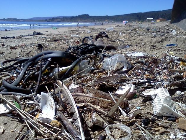 basura en Playa Blanca sector Lota | Hedson Diaz
