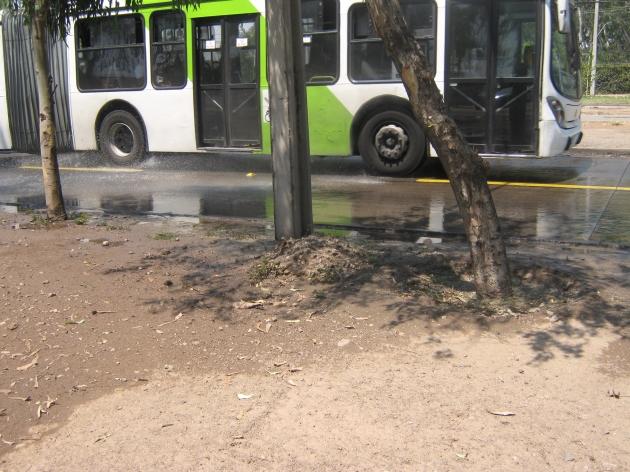 Contaminación y malos olores en Avda. Pajaritos | Maria Angélica Ponce