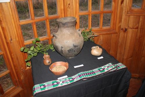 Asociación Mapuche Txokin Mapu