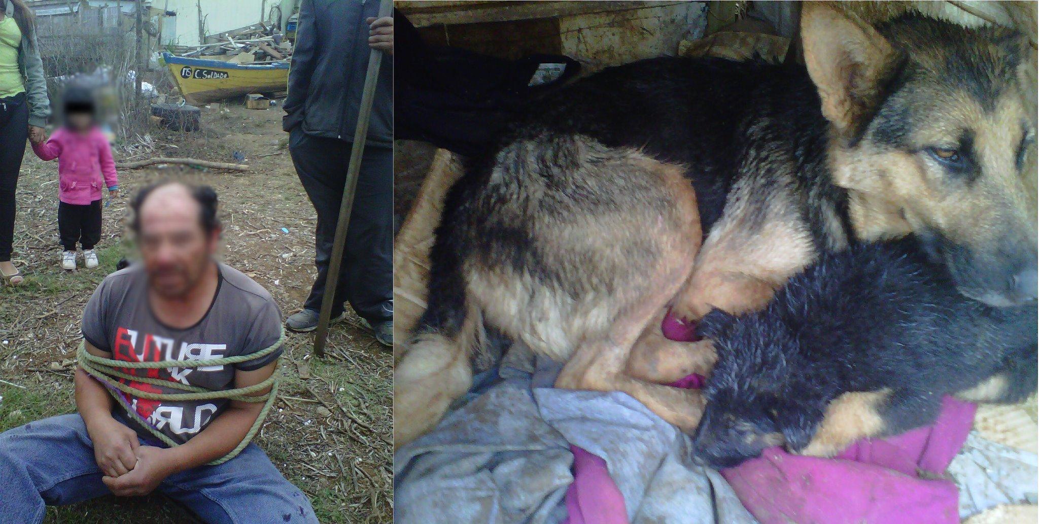 zoofilia El presunto abusador y el animal afectado