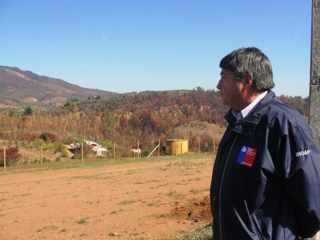 Cereceros de quill n afectados por incendios reciben apoyo for Viveros en curico