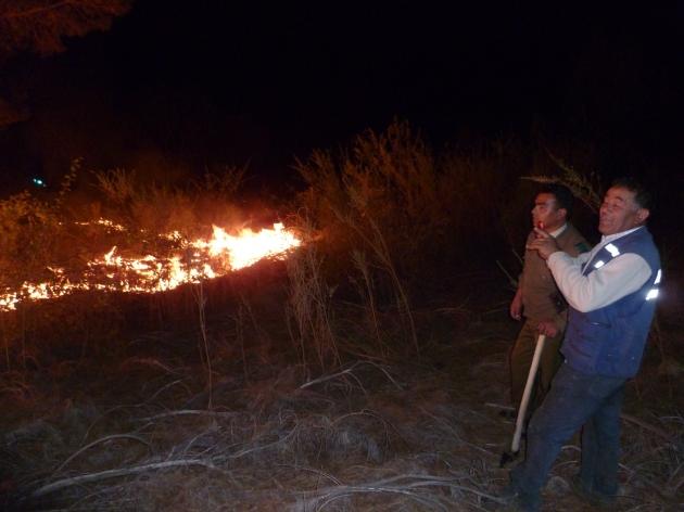 Incendio Intencional en bosque de Guarilihue   Rodrigo Ormeño