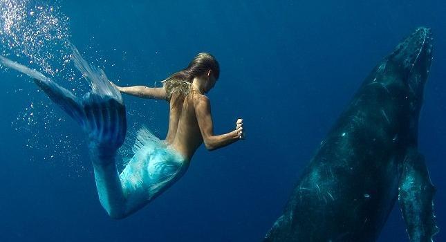La sirena, Hannah Fraser