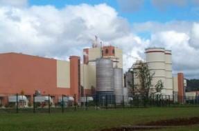 Imagen:www.plantavaldivia.cl