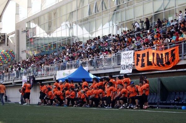 Felinos LCFA 2012 | Cristian Salas S.