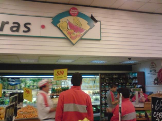 Paloma posa para trabajadores y clientes de supermercado Santa Isabel de Reñaca | Gino Villanueva