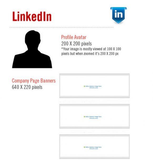 Medidas para LinkedIn | Fuente: Original Ginger