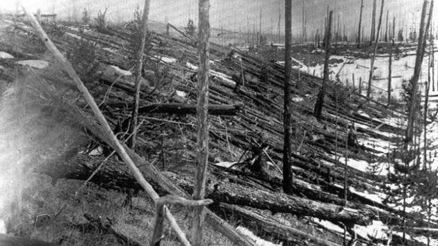 Imagen de la devastación dejada en la tundra de Tunguska tomada en 1927