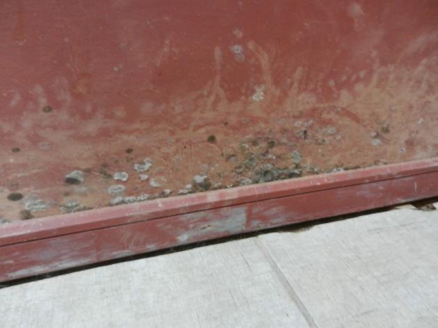 Constructora Mancura estafa a las personas | Patricia Valenzuela Wagner