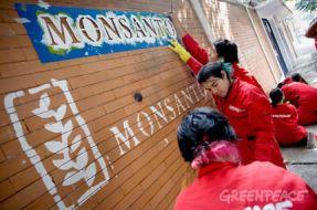 Imagen:Greenpeace (c)
