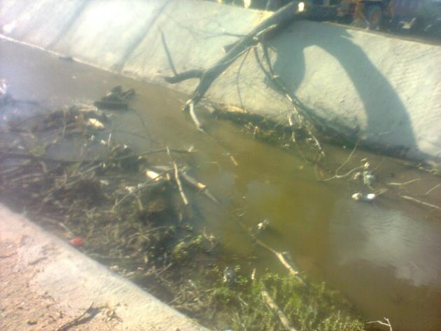 Desperdicios en canal Los Fresnos | Maria Paz Casanova Laudien