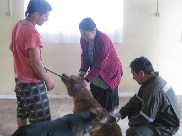Operativo de desparasitado de mascotas | Fernando Gonzáles