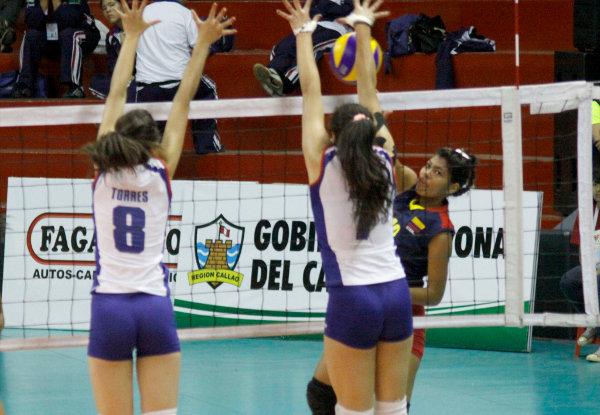 Prensa Fevochi ©