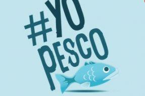 Imagen:www.yopesco.cl