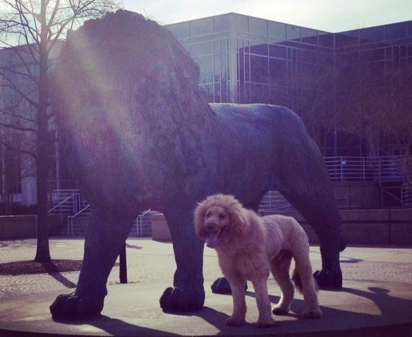 Charles junto al símbolo de la universidad que representa | Facebook