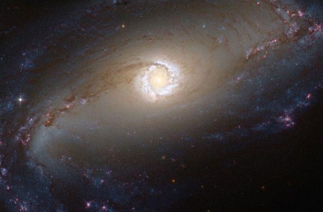 NASA muestra dónde nacen las estrellas