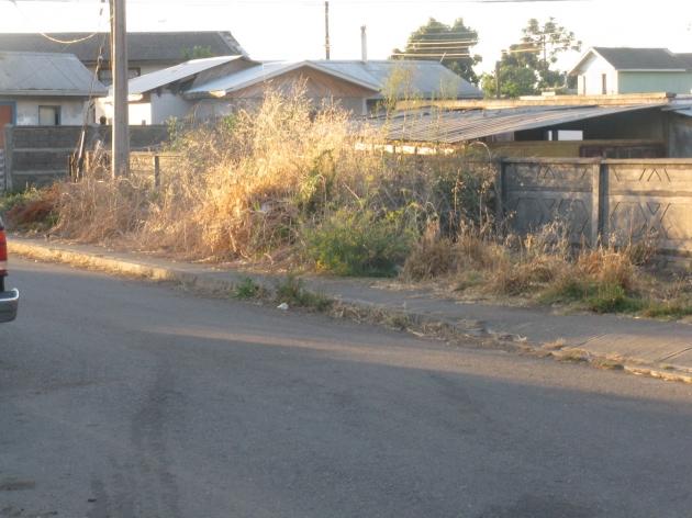 Pésimas condiciones de aseo en Lomas Coloradas | Alejandra Cea