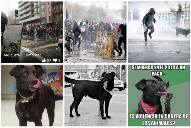 Guerrilla Comunicacional México | Facebook