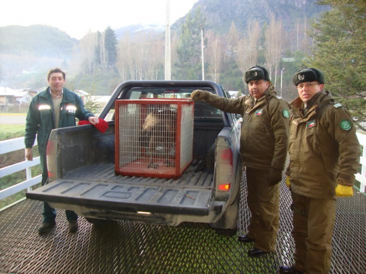 Carabineros Retén Villa Ortega | Carabineros de Chile