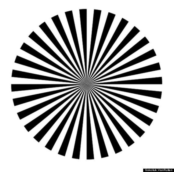 Ilusión óptica | Journal of Neuroscience