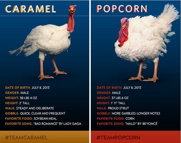 'Caramel' y 'Popcorn', los afortunados | www.whitehouse.gov