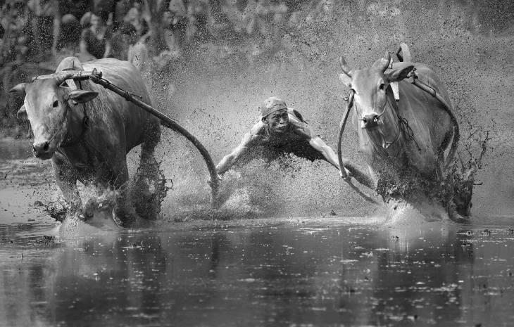 YongSheng Zheng | Sony World Photography Awards