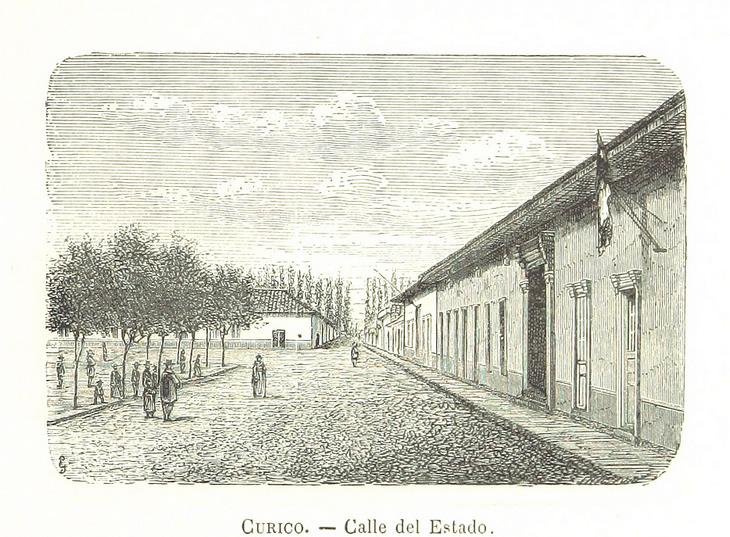 Curicó - Calle del Estado