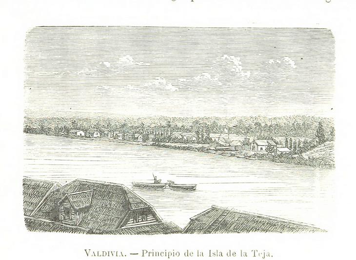 Valdivia - Principio de Isla Teja