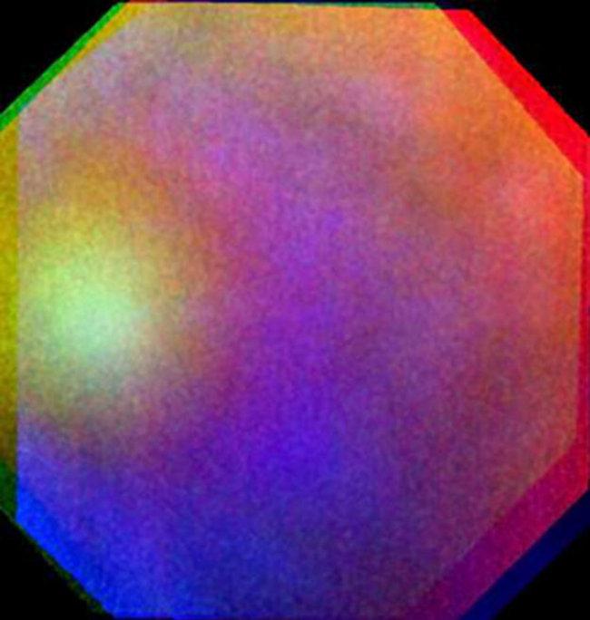 Gloria en Venus | ESA