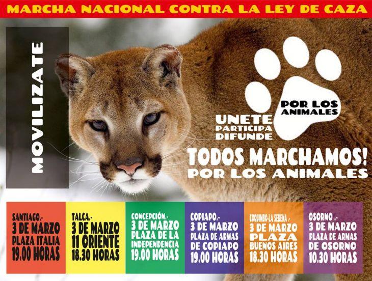 Colectivo Animalista Alza Tu Voz