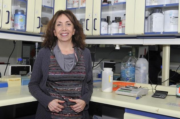 Ana María Cárdenas, investigadora del Centro Interdisciplinario de Neurociencia de la U. de Valparaíso (CINV)