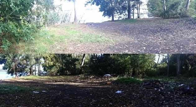 Limpiando la Laguna Grande | LP