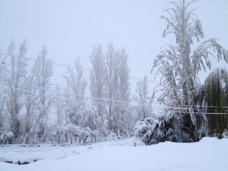 Nieve en Las Breas | Región de Coquimbo
