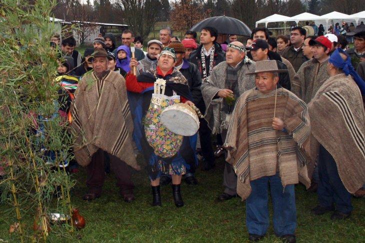 Comunidad Mapuche- CONADI